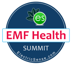 EMF Summit Logo